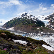 Stock Photo: Salmon Glacier