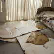 Water leaking damaged home — Stock Photo