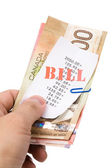 Bills and canadian dollars — Foto de Stock