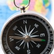 Compass and Globe — Stock Photo #35012587