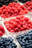 Berry Fruit — Stockfoto