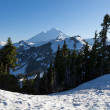 Mt Baker — Stock Photo #37613839