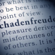 Schadenfreude — Stock Photo