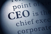 Chief executive officer — Stockfoto