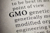 Genetically modified organism — Stock Photo