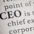 Chief executive officer — 图库照片