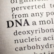 Stock Photo: Word of DNA