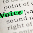 Stock Photo: Voice