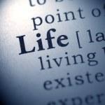 Life — Stock Photo #40377149