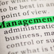 Management — Foto Stock #40928613