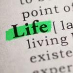 Life — Stock Photo #40928991