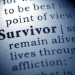 Survivor — Stock Photo #41582655