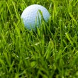 Golf Ball and Grass — Stock Photo #41583923