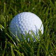 Golf Ball — Stock Photo #41592347