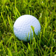Golf Ball and Grass — Stock Photo #41592379