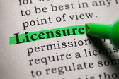 Fake Dictionary, definition of the word licensure. — Stock Photo