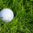 Golf Ball and Grass — Stock Photo #42165895