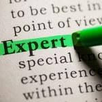 Expert — Stock Photo #42753817