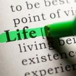 Life — Stock Photo #43533823