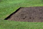 Grünes gras und boden — Stockfoto