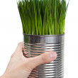 Green grass and metal can — Stock Photo #9786909