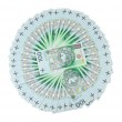 Polish zloty banknotes arranged in a circle — Stock Photo #12146811