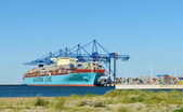 Maersk Elba in DCT Gdansk — Stock Photo