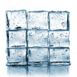 Wall made ​​of ice cubes — Photo