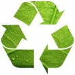 Recycle symbol with leaf — Stock Photo #30580011
