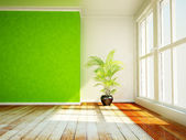 A plant in the room — Stock Photo