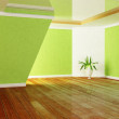 Green plant in the room — Foto Stock