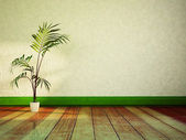Green plant in the room — Stock Photo