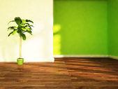 Een groene plant in de kamer — Stockfoto
