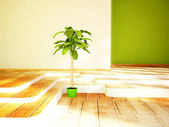 A green plant in the room — Stock Photo