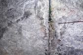 Texture of the concrete — Stock Photo