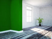 A green plant in the empty room — Stock Photo