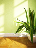 A plant on the floor — Foto Stock