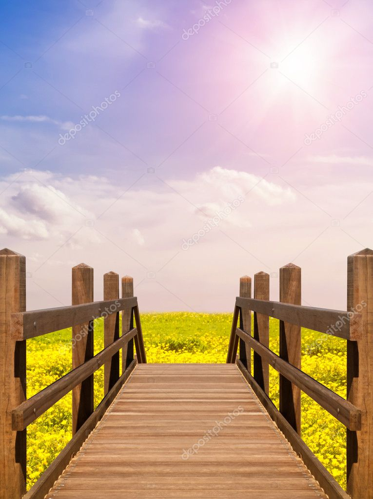 Wooden bridge leading into buttercup flower field — Stock Photo #12860804