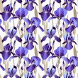 Seamless pattern with decorative lilac iris flower  — Stock Vector