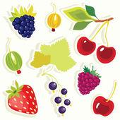 Vector set of decorative berries sticker. — Stock Vector