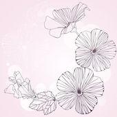 Romantiska ram med rosa hibiskus blommor. — Stockvektor