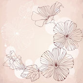 Romantic frame with pink hibiscus flowers. — Vector de stock