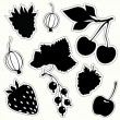 Stock Vector: Vector set of decorative berries sticker. Black silhouettes on white background