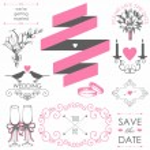 Set of artistic wedding elements — Stock Vector