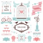 Vintage set of wedding elements — Stock Vector #45901481