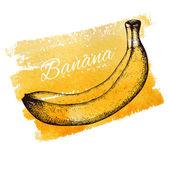 Hand drawn vintage banana — Stock Vector