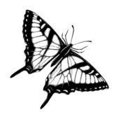 Mão desenhadas borboletas — Vetor de Stock
