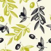 Olive tree twigs — Stock Vector