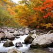 Autumn colours of valley — Stock Photo