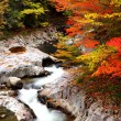 Stock Photo: Autumn colours of valley